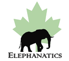 Elephanatics